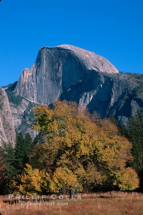 Half Dome, autumn. Half Dome, Yosemite National Park, California, USA, natural history stock photograph, photo id 02348