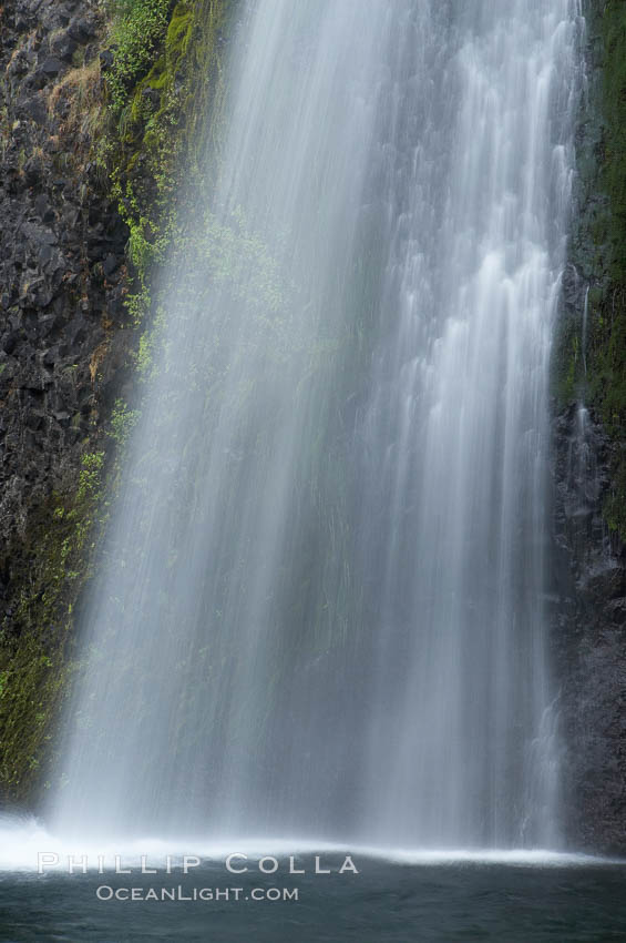 Horsetail Falls drops 176 feet just a few yards off the Columbia Gorge Scenic Highway. Horsetail Falls, Columbia River Gorge National Scenic Area, Oregon, USA, natural history stock photograph, photo id 19318