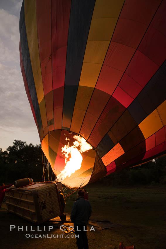 Hot Air Ballooning over Maasai Mara plains, Kenya. Maasai Mara National Reserve, Kenya, natural history stock photograph, photo id 29800