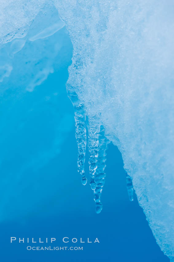 Icicles and melting ice, hanging from the edge of an blue iceberg.  Is this the result of climate change and global warming?. Brown Bluff, Antarctic Peninsula, Antarctica, natural history stock photograph, photo id 24870
