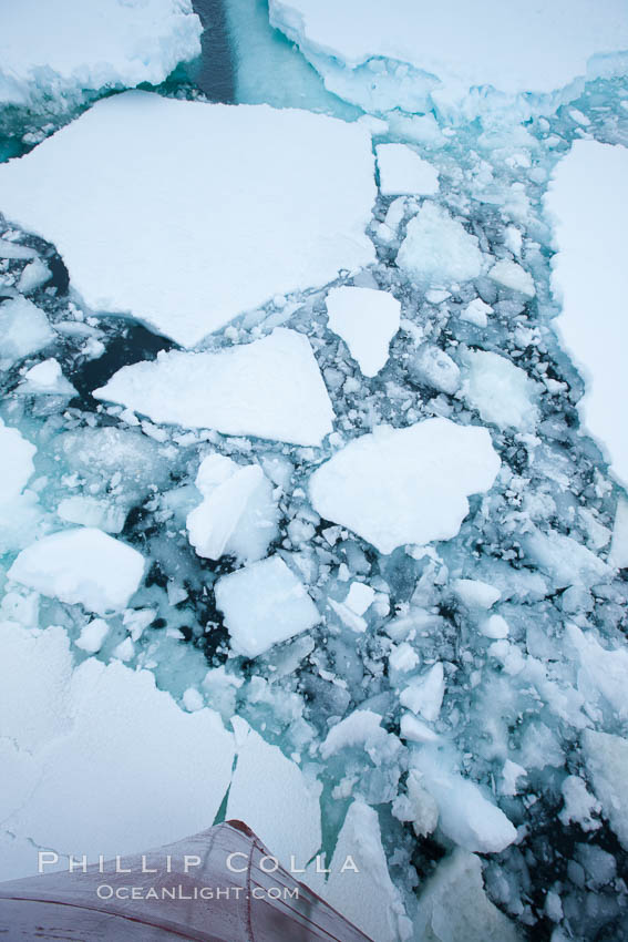 Pack ice and brash ice fills the Weddell Sea, near the Antarctic Peninsula.  This pack ice is a combination of broken pieces of icebergs, sea ice that has formed on the ocean. Weddell Sea, Southern Ocean, natural history stock photograph, photo id 24919