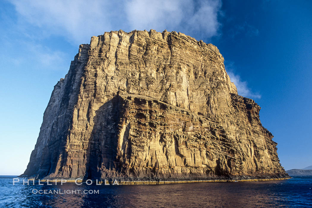 Isla Afuera is a volcanic plug towering 700 feet above the ocean near the south end of Guadalupe Island.  Its steep cliffs extend underwater hundreds of feet offering spectacular wall diving and submarine topography. Guadalupe Island (Isla Guadalupe), Baja California, Mexico, natural history stock photograph, photo id 09753