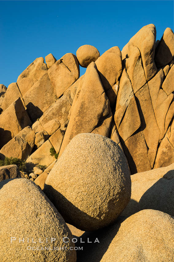 Jumbo Rocks at sunset, warm last light falling on the boulders. Joshua Tree National Park, California, USA, natural history stock photograph, photo id 29182