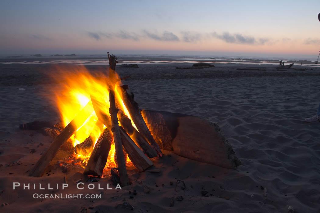 Evening beach fire. Kalaloch, Olympic National Park, Washington, USA, natural history stock photograph, photo id 13788