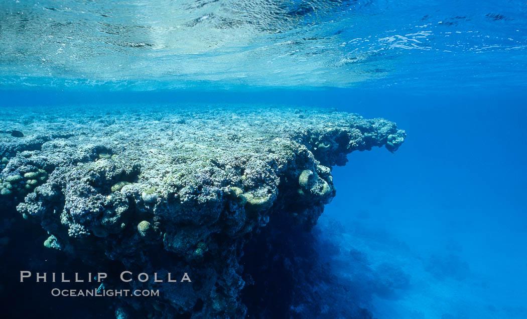 Lagoon pinnacles. Rose Atoll National Wildlife Sanctuary, American Samoa, USA, natural history stock photograph, photo id 00734