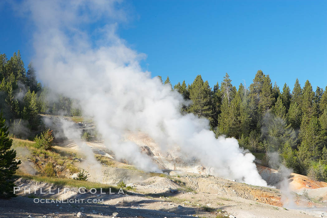 Ledge Geyser, vents releasing steam, in the Porcelain Basin area of Norris Geyser Basin. Yellowstone National Park, Wyoming, USA, natural history stock photograph, photo id 13484