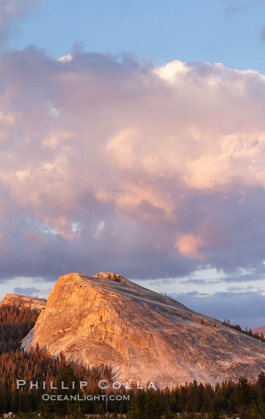Lembert Dome and late afternoon clouds rise above Tuolumne Meadows in the High Sierra, catching the fading light of sunset. Yosemite National Park, California, USA, natural history stock photograph, photo id 09943