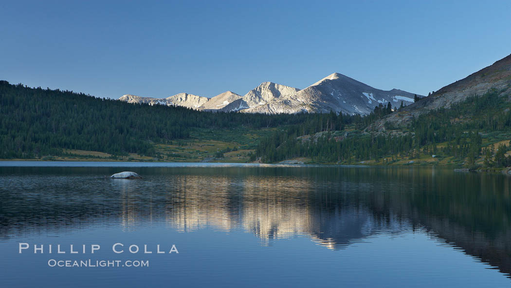 Mammoth Peak rises above a placid Tioga Lake, at sunrise. Yosemite National Park, California, USA, natural history stock photograph, photo id 23268
