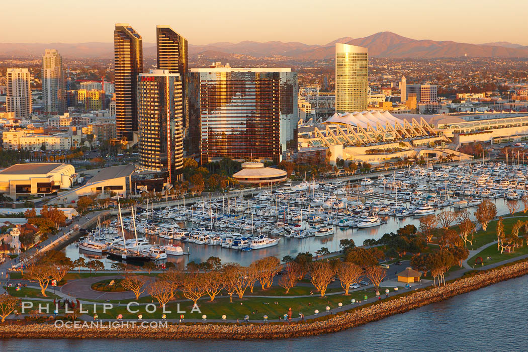 Marriott Hotel towers, rising above the Embarcadero Marine Park and yacht marina. San Diego, California, USA, natural history stock photograph, photo id 22291