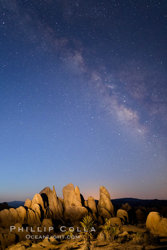 Milky Way over Joshua Tree National Park at Astronomical Twilight, Pre-dawn. California, USA, natural history stock photograph, photo id 28414