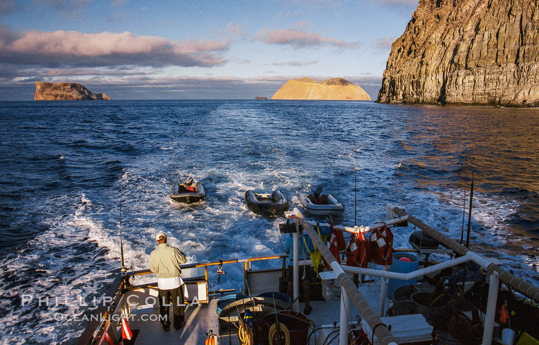 Motoring, south end of Guadalupe Island, Isla Afuera (left) and Isla Adentro (right) in distance. Guadalupe Island (Isla Guadalupe), Baja California, Mexico, natural history stock photograph, photo id 36230