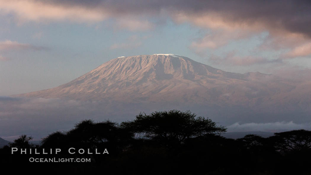 Mount Kilimanjaro, Tanzania, viewed from Amboseli NP, Kenya. Amboseli National Park, natural history stock photograph, photo id 29539
