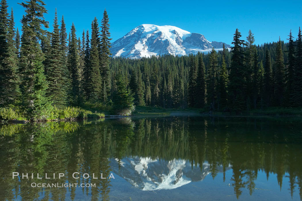 Mount Rainier is reflected in the calm waters of Reflection Lake, early morning. Mount Rainier National Park, Washington, USA, natural history stock photograph, photo id 13860