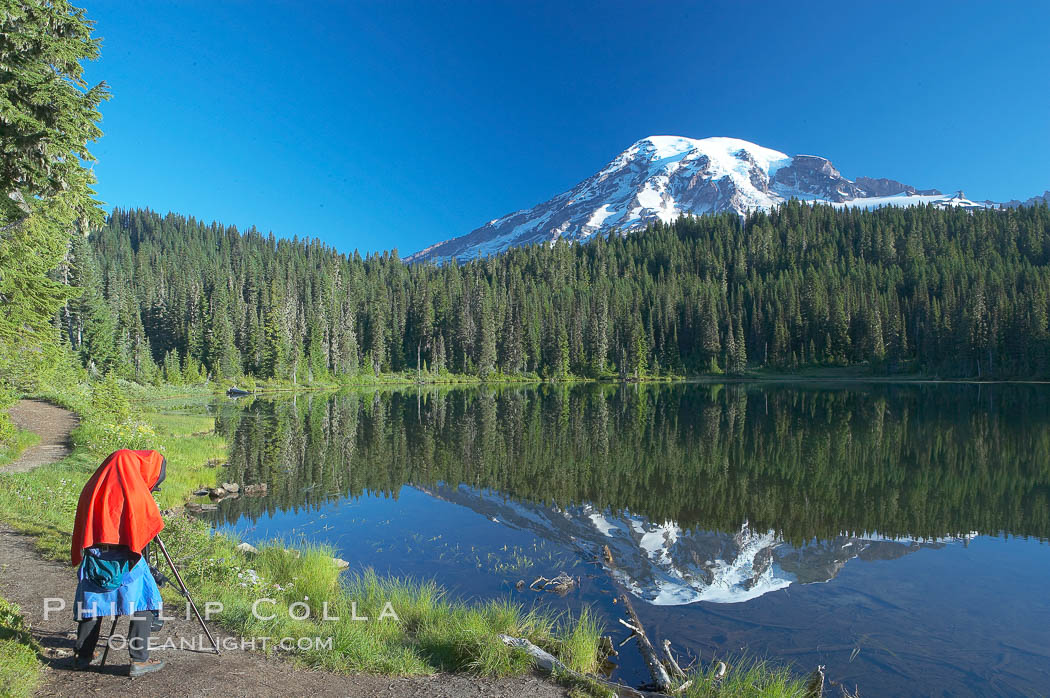 A photographer composes his image with a large view camera, Reflection Lake and Mount Rainier. Mount Rainier National Park, Washington, USA, natural history stock photograph, photo id 13951