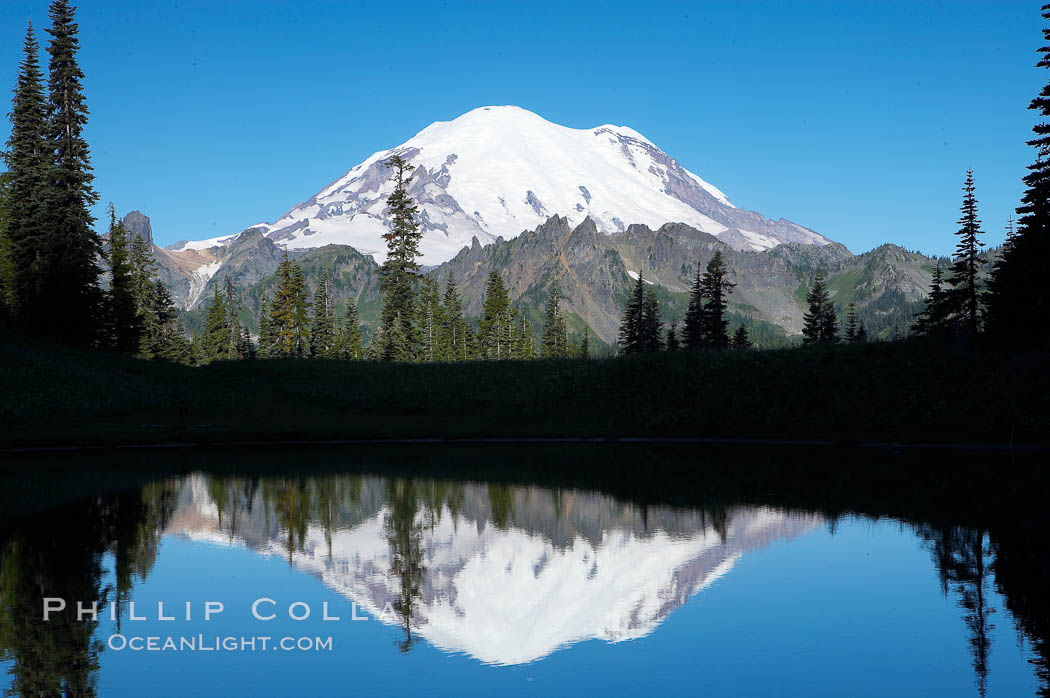 Mount Rainier is reflected in Upper Tipsoo Lake. Tipsoo Lakes, Mount Rainier National Park, Washington, USA, natural history stock photograph, photo id 13834