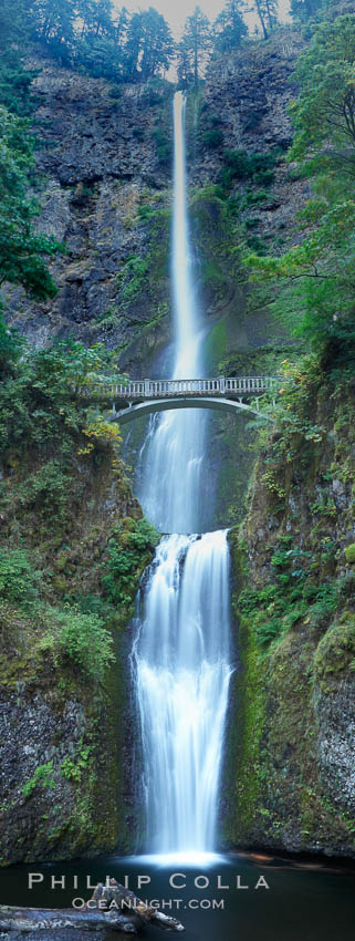 Multnomah Falls.  Plummeting 620 feet from its origins on Larch Mountain, Multnomah Falls is the second highest year-round waterfall in the United States.  Nearly two million visitors a year come to see this ancient waterfall making it Oregon's number one public destination. Columbia River Gorge National Scenic Area, USA, natural history stock photograph, photo id 19313