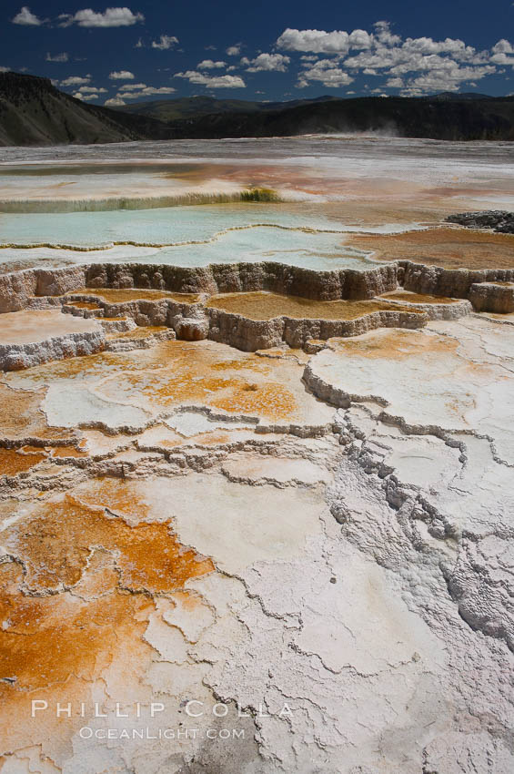 New Blue Spring and its travertine terraces, part of the Mammoth Hot Springs complex. Mammoth Hot Springs, Yellowstone National Park, Wyoming, USA, natural history stock photograph, photo id 13625