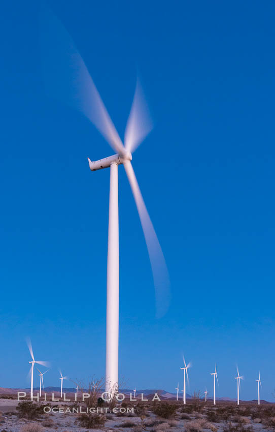Ocotillo Express Wind Energy Projects, moving turbines lit by the rising sun, Ocotillo, California, USA, natural history stock photograph, photo id 30245