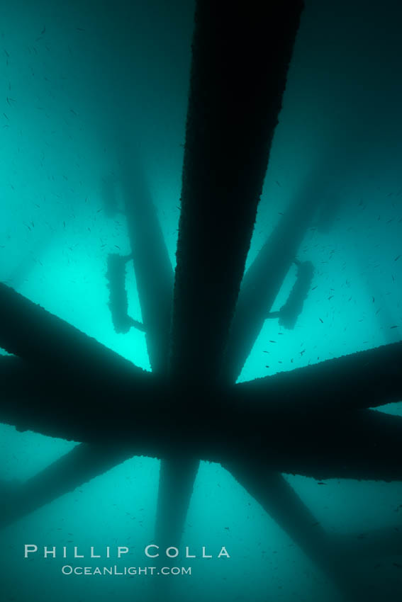 Oil Rig Eureka, Underwater Structure. Long Beach, California, USA, natural history stock photograph, photo id 31081