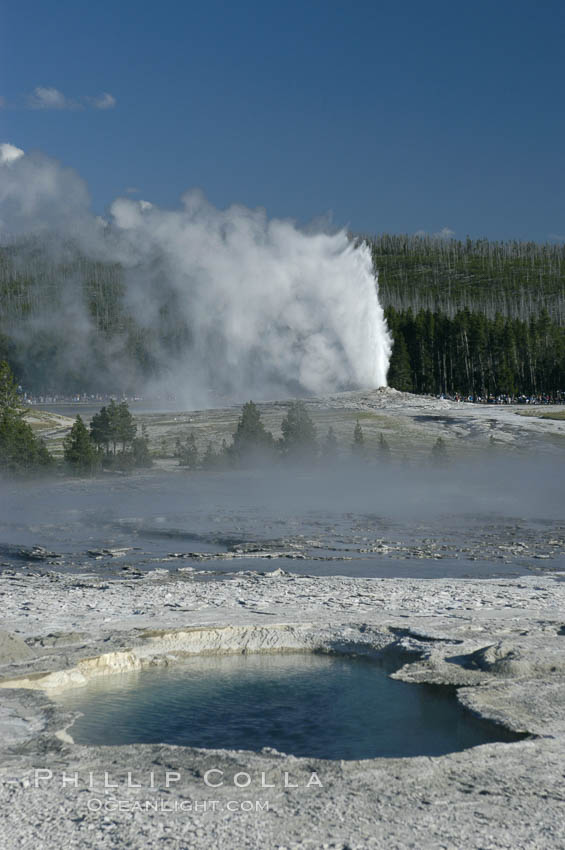 Old Faithful Geyser erupting, viewed from Geyser Hill with unidentified pool in foreground. Upper Geyser Basin, Yellowstone National Park, Wyoming, USA, natural history stock photograph, photo id 07235