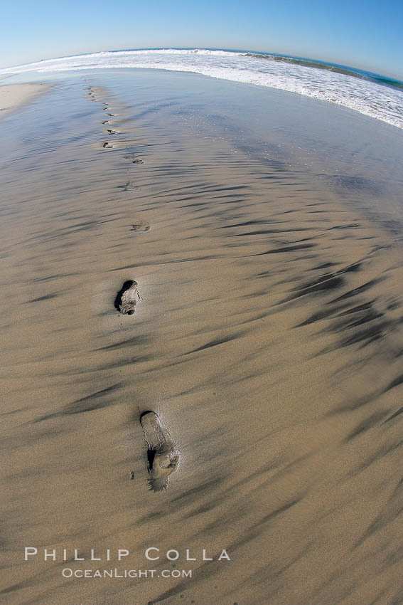 Empty beach after a session in the water, footprints in the sand. Ponto, Carlsbad, California, USA, natural history stock photograph, photo id 17695