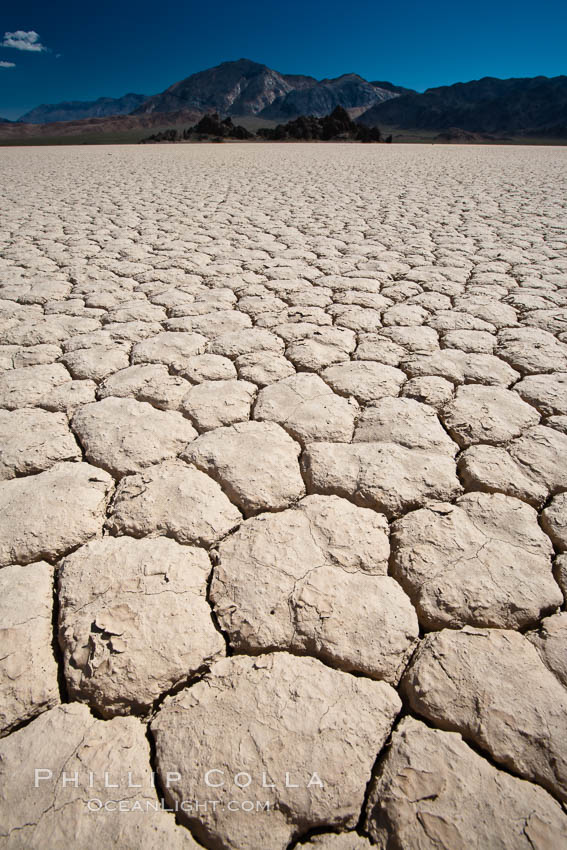 Racetrack Playa, an ancient lake now dried and covered with dessicated mud. Death Valley National Park, California, USA, natural history stock photograph, photo id 25264