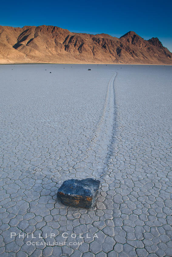 Sailing stone on the Death Valley Racetrack playa.  The sliding rocks, or sailing stones, move across the mud flats of the Racetrack Playa, leaving trails behind in the mud.  The explanation for their movement is not known with certainty, but many believe wind pushes the rocks over wet and perhaps icy mud in winter. Racetrack Playa, Death Valley National Park, California, USA, natural history stock photograph, photo id 25327