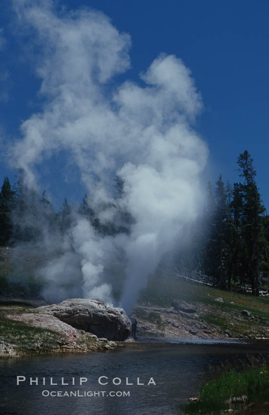 Riverside Geyser at peak eruption, arcing over the Firehole River. Upper Geyser Basin, Yellowstone National Park, Wyoming, USA, natural history stock photograph, photo id 07199