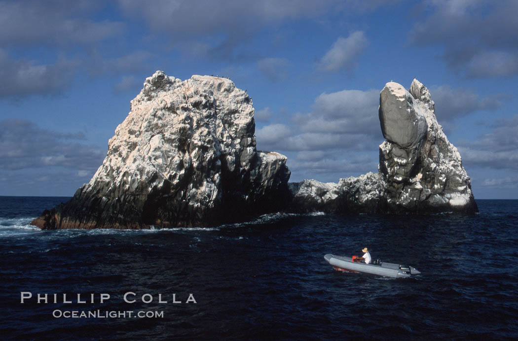 Roca Partida, a small remote seamount in the Revillagigedos., natural history stock photograph, photo id 05622