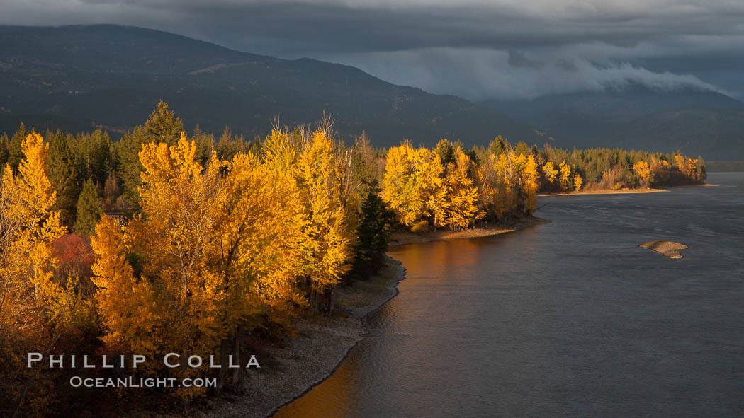 Image 26186, Fall colors along Little Shuswap Lake, near the Adams River. Adams River, Roderick Haig-Brown Provincial Park, British Columbia, Canada, Phillip Colla, all rights reserved worldwide. Keywords: adams river, british columbia, canada, outdoors, outside, provincial parks, river, roderick haig-brown provincial park.