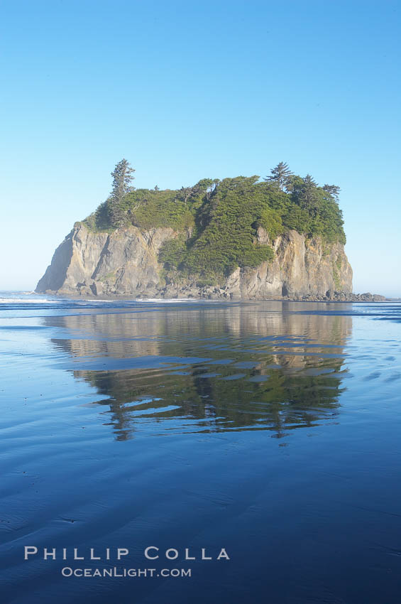 Ruby Beach and its famous seastack, early morning. Ruby Beach, Olympic National Park, Washington, USA, natural history stock photograph, photo id 13817