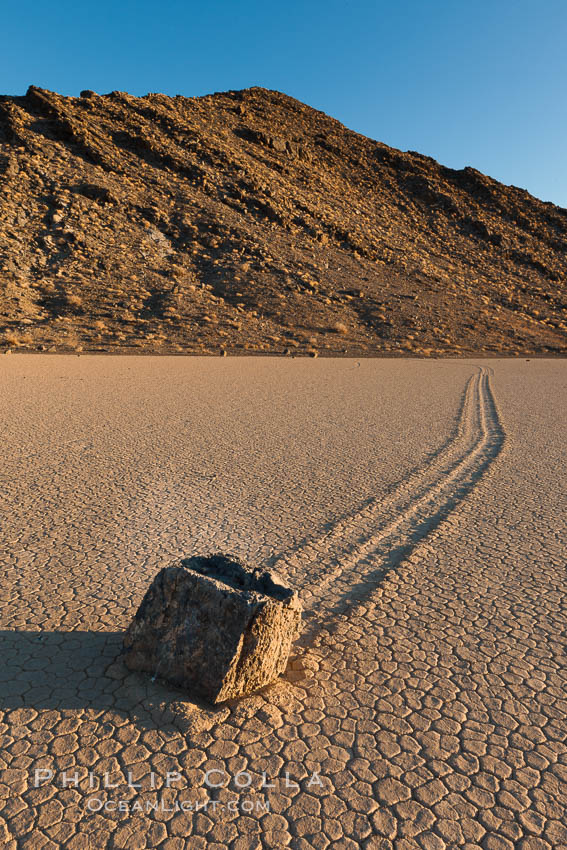 Sailing stone on the Racetrack Playa. The sliding rocks, or sailing stones, move across the mud flats of the Racetrack Playa, leaving trails behind in the mud. The explanation for their movement is not known with certainty, but many believe wind pushes the rocks over wet and perhaps icy mud in winter. Racetrack Playa, Death Valley National Park, California, USA, natural history stock photograph, photo id 27691