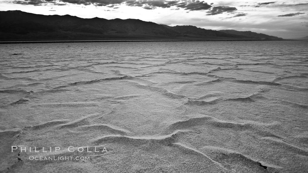 Salt polygons.  After winter flooding, the salt on the Badwater Basin playa dries into geometric polygonal shapes. Death Valley National Park, California, USA, natural history stock photograph, photo id 25299