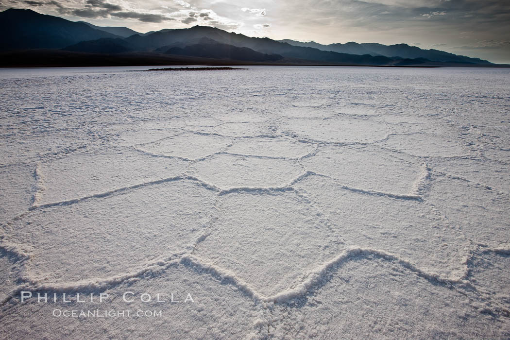 Salt polygons.  After winter flooding, the salt on the Badwater Basin playa dries into geometric polygonal shapes. Death Valley National Park, California, USA, natural history stock photograph, photo id 25303