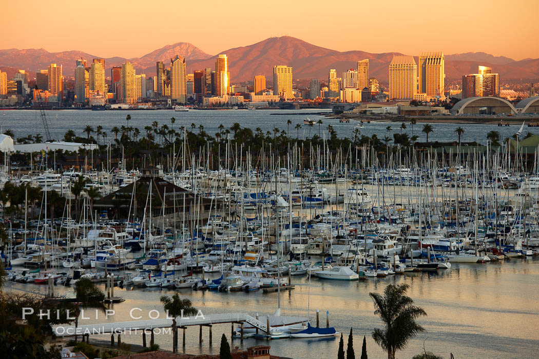 San Diego city skyline, showing the buildings of downtown San Diego rising above San Diego Harbor, viewed from Point Loma with the San Diego Yacht Club in the foreground, sunset. California, USA, natural history stock photograph, photo id 22262