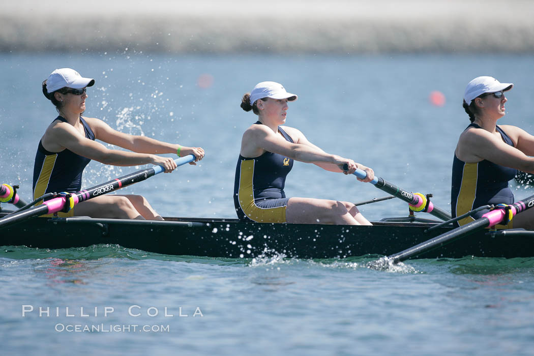 Cal (UC Berkeley) women en route to a second place finish in the Jessop-Whittier Cup final, 2007 San Diego Crew Classic. Mission Bay, California, USA, natural history stock photograph, photo id 18700