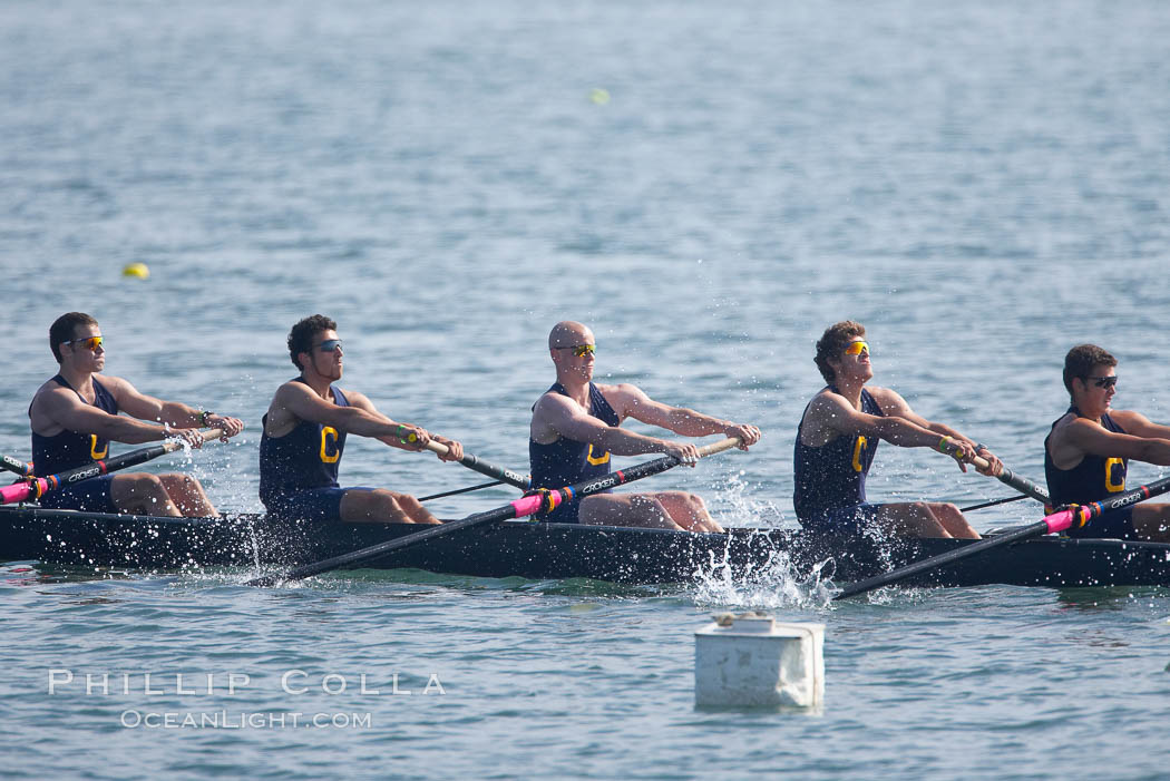 Cal (UC Berkeley) men's collegiate novice crew on their way to winning the Derek Guelker Memorial Cup, 2007 San Diego Crew Classic. Mission Bay, California, USA, natural history stock photograph, photo id 18659