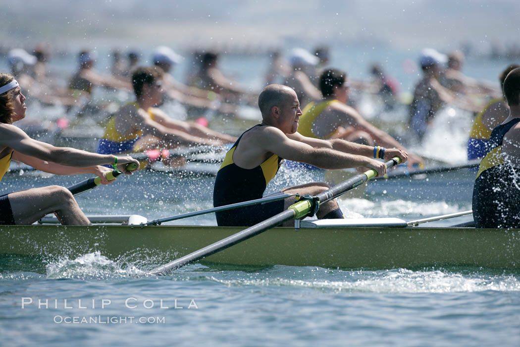 UCSD men on their way to winning the finals of the Cal Cup, 2007 San Diego Crew Classic. Mission Bay, California, USA, natural history stock photograph, photo id 18675