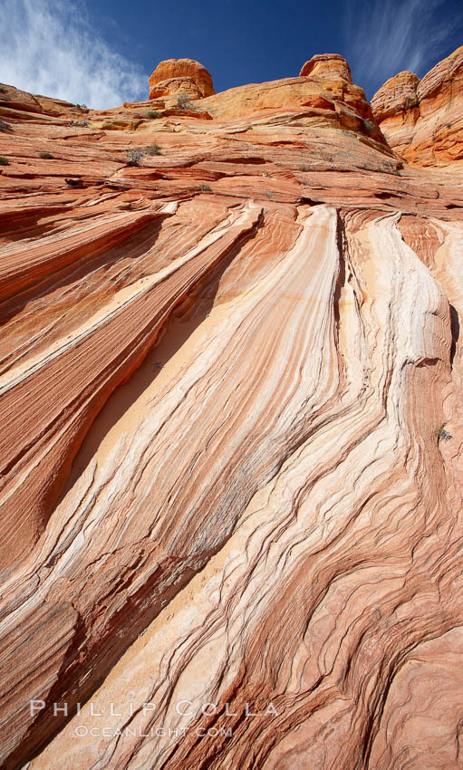 Striations in sandstone tell of eons of sedimentary deposits, a visible geologic record of the time when this region was under the sea. North Coyote Buttes, Paria Canyon-Vermilion Cliffs Wilderness, Arizona, USA, natural history stock photograph, photo id 20627
