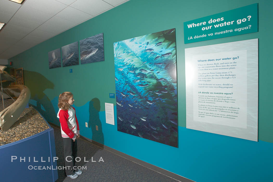 "A young visitor views wall displays at the ""Water"" exhibit, San Diego Natural History Museum. Balboa Park, San Diego, California, USA, natural history stock photograph, photo id 22179"