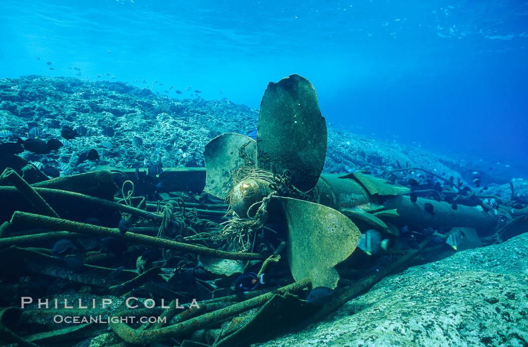 Propellor and debris, wreck of F/V Jin Shiang Fa. Rose Atoll National Wildlife Sanctuary, American Samoa, USA, natural history stock photograph, photo id 00810