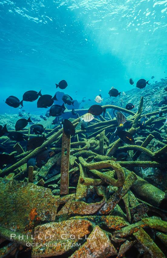 Debris,  wreck of F/V Jin Shiang Fa. Rose Atoll National Wildlife Sanctuary, American Samoa, USA, natural history stock photograph, photo id 00814