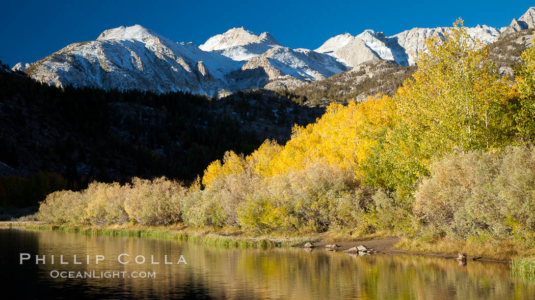 Sierra Nevada mountains and aspen trees, fall colors reflected in the still waters of North Lake. Bishop Creek Canyon Sierra Nevada Mountains, California, USA, Populus tremuloides, natural history stock photograph, photo id 26078