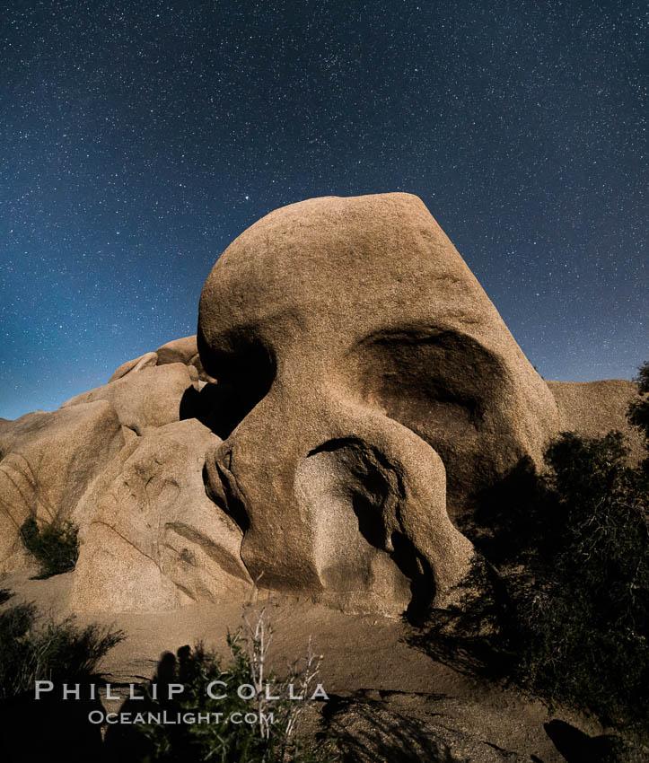 Skull Rock and stars at night. Joshua Tree National Park, California, USA, natural history stock photograph, photo id 29188