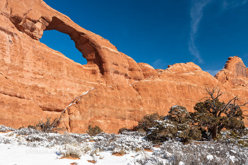 Skyline Arch spans 90 feet. Skyline Arch, Arches National Park, Utah, USA, natural history stock photograph, photo id 18170