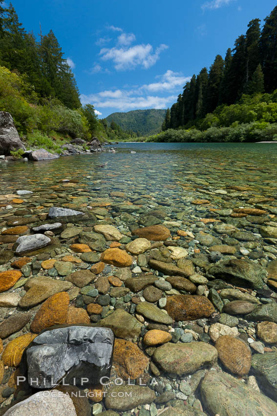 Smith River, the last major free flowing river in California.  Trees include the coast redwood, western hemlock, Sitka spruce, grand fir and Douglas fir. Jedediah Smith State Park, USA, natural history stock photograph, photo id 25851