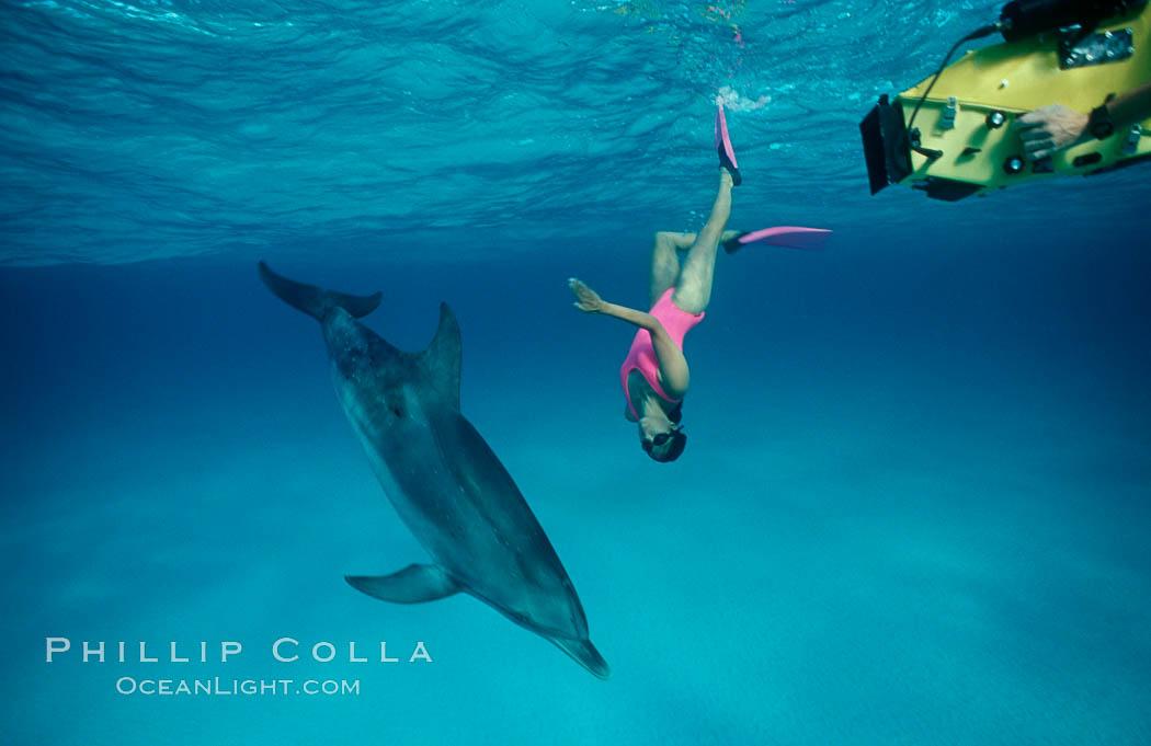 Atlantic spotted dolphin, Olympic swimmer Mikako Kotani, videographer Tom Fitz. Bahamas, Stenella frontalis, natural history stock photograph, photo id 00014