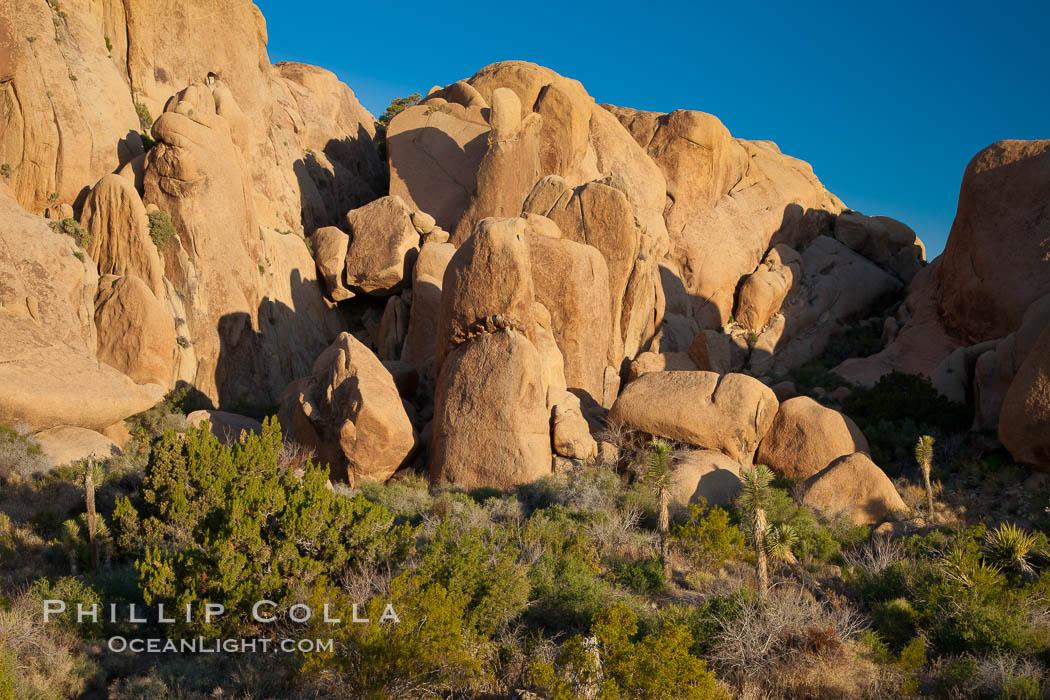 Sunrise on stone boulders, Joshua Tree National Park, desert southwest. Joshua Tree National Park, California, USA, natural history stock photograph, photo id 26780