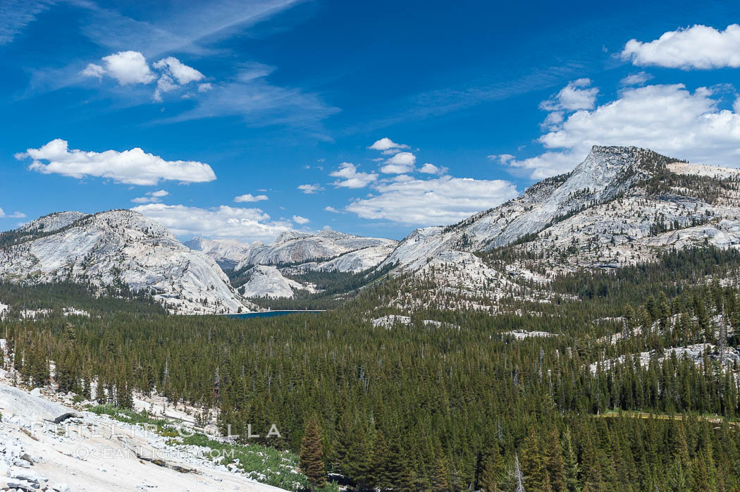 Tenaya Peak (right) rises above Tenaya Lake (left center) with granite domes rising above the northern banks of the lake, viewed from Olmsted Point. Yosemite National Park, California, USA, natural history stock photograph, photo id 09956