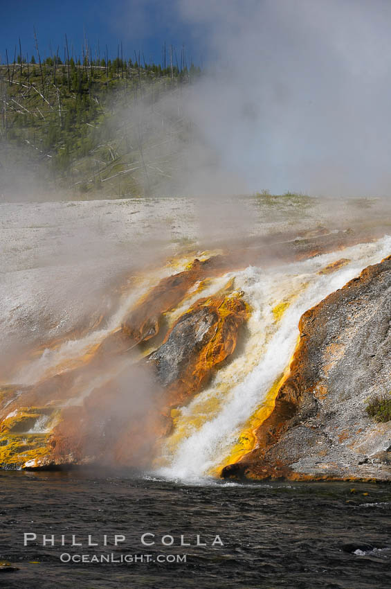 Thermophilac heat-loving bacteria color the runoff canals from Excelsior Geyser as it empties into the Firehole River. Midway Geyser Basin, Yellowstone National Park, Wyoming, USA, natural history stock photograph, photo id 13600